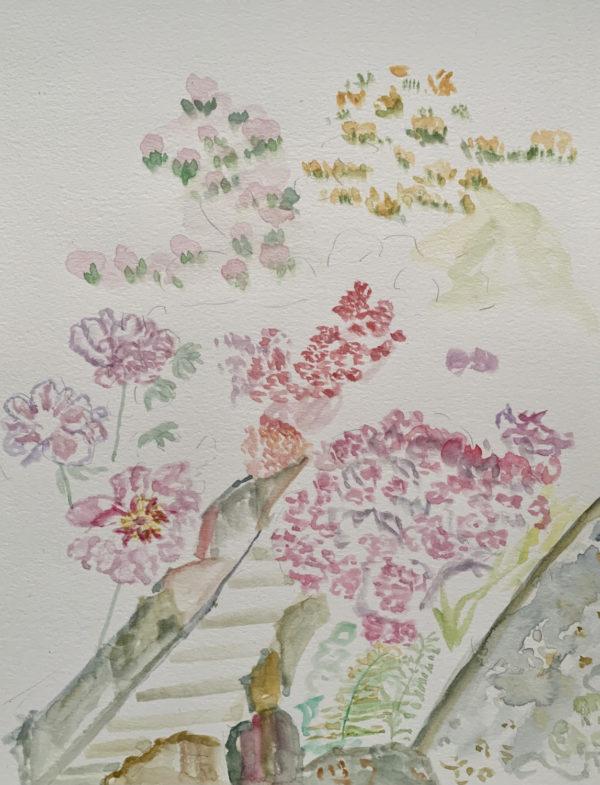 Watercolor painting - Full bloom
